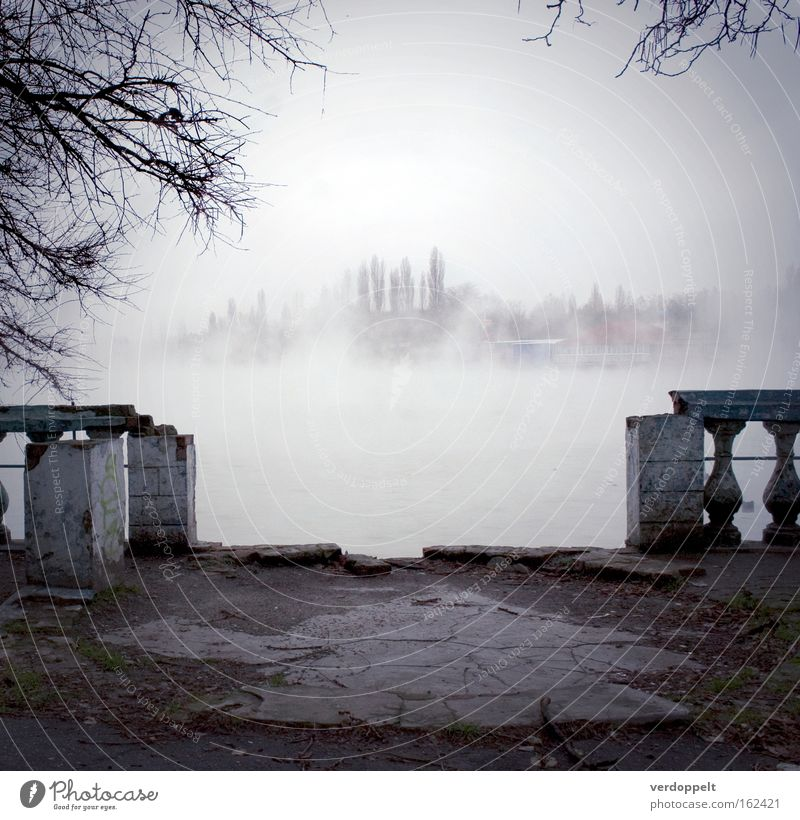 m_2 Autumn Gray Fog Fogged over Water Destruction Gray clouds Winter Tree Architecture Seasons Weather haze old park oblivion Nebel vernebelt Dunst twigs