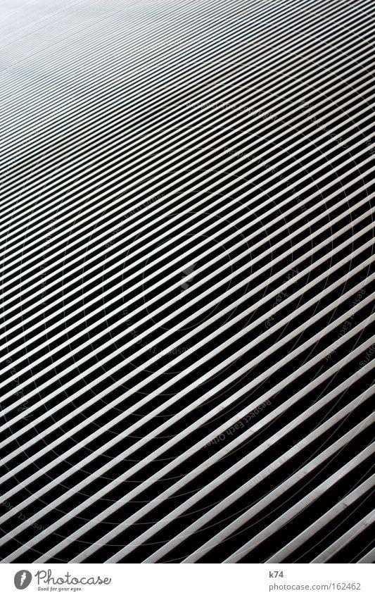 Cold Metal Glittering Stripe Deep Diagonal Hard Zebra High-tech