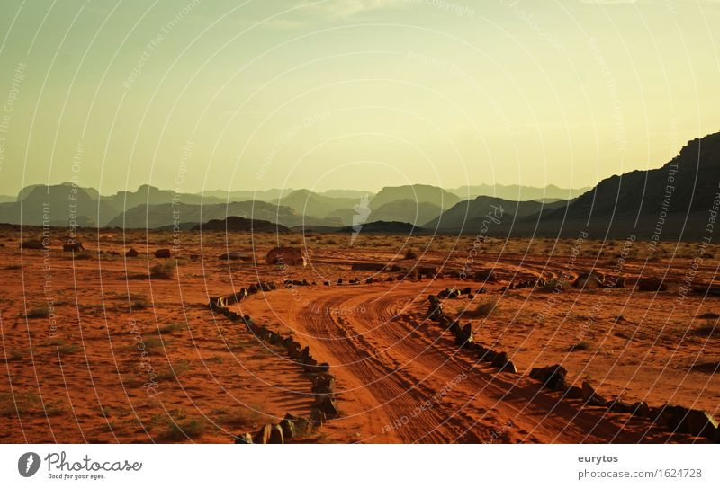 Jordan's Desert Environment Nature Landscape Plant Animal Earth Sand Sky Sunlight Climate Climate change Weather Rock To enjoy Vacation & Travel Sunset