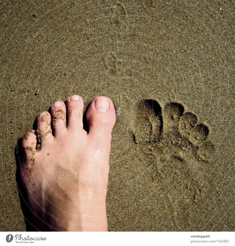 m_4 Ocean Human being Parts of body Feet Half Mole Toes Sand To go for a walk Walking Footprint Signs and labeling nales Grain step dent trace Barefoot