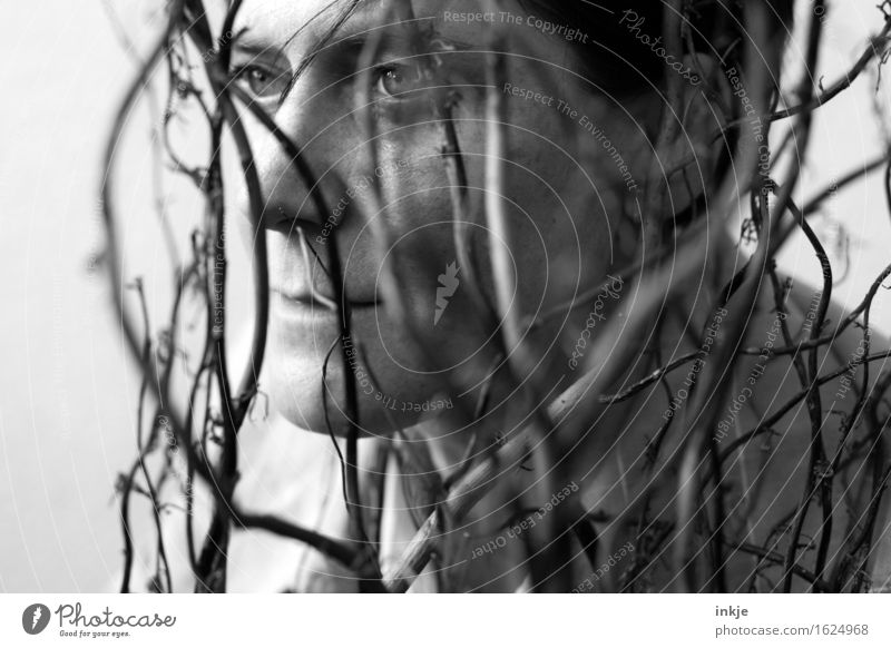 black and white Woman Adults Life Face 1 Human being Plant Bushes Branch Twig Willow corkscrew Hazelnut Old Gloomy Gray Backwards Calm Black & white photo