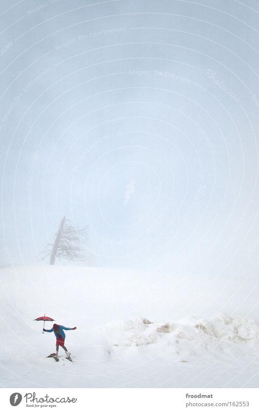 Woman Sky Tree Winter Cold Snow Mountain Contentment Fog Gloomy Switzerland Umbrella Gale Passion Surrealism Bleak
