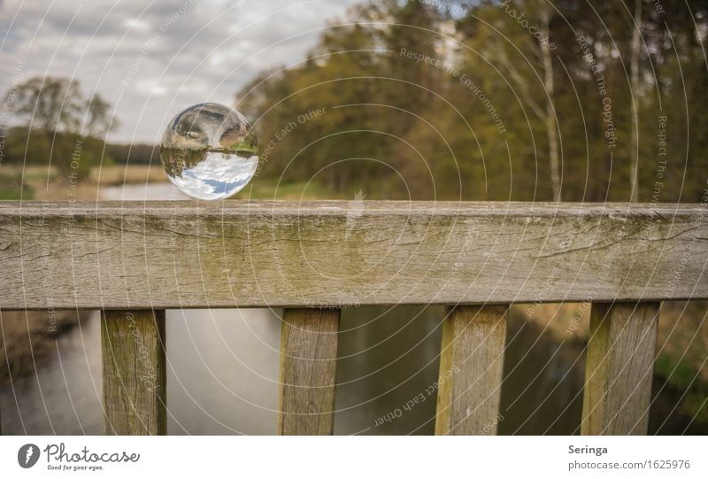 Beautiful view Environment Nature Landscape Plant Animal Spring Meadow Field Forest River bank Glass Moody Joie de vivre (Vitality) Bridge Glass ball
