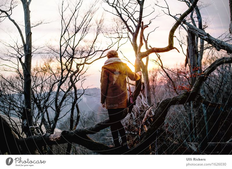 Human being Woman Sky Nature Youth (Young adults) Plant Young woman Tree Landscape Loneliness 18 - 30 years Forest Mountain Adults Cold Environment