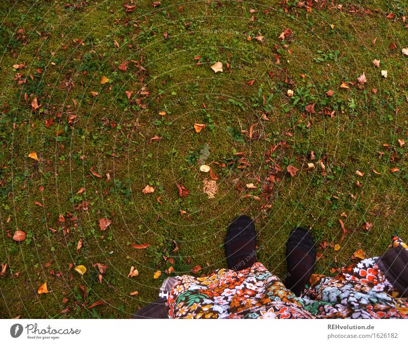mainly green Human being Feminine Woman Adults Feet 1 18 - 30 years Youth (Young adults) Autumn Garden Park Meadow Stand Multicoloured Green Joy Happy Adventure