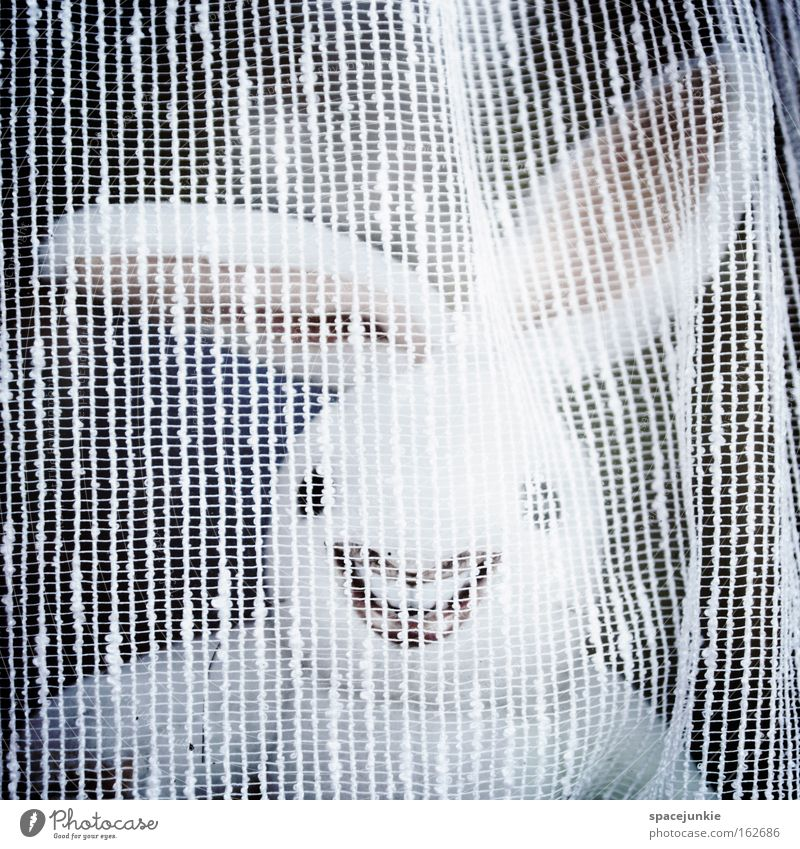 Behind the curtain Hare & Rabbit & Bunny Easter Crazy Freak Easter egg Laughter Ear Curtain Hiding place Joy Easter Bunny
