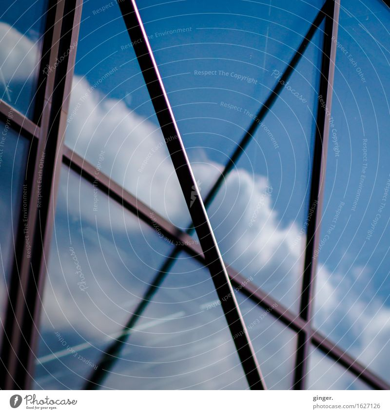 Cologne UT | Lime | Cotton candy Sky Clouds Beautiful weather Building Architecture Facade Window Town Blue Brown White Prop Cold Zigzag Cross Soft Tall Above