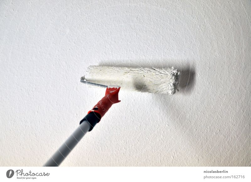 White Colour Wall (building) Wall (barrier) Room Action New Painting (action, work) Moving (to change residence) Craft (trade) Boredom Redecorate Painter