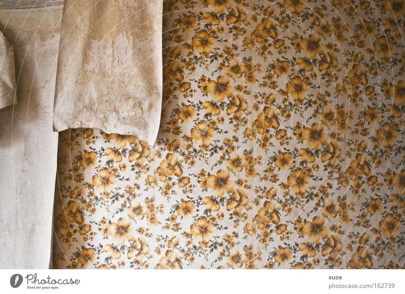 Old Wall (building) Wall (barrier) Time Flat (apartment) Design Living or residing Decoration Broken Retro Transience Moving (to change residence) Past Wallpaper GDR Flake off