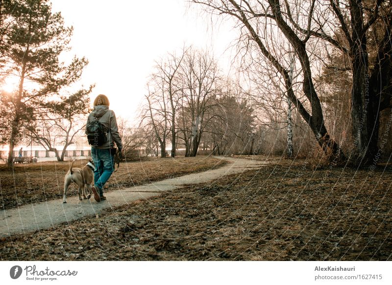 Young woman is walking with her dog in the evening park. Human being Dog Nature Vacation & Travel Youth (Young adults) Summer Tree Animal 18 - 30 years Adults