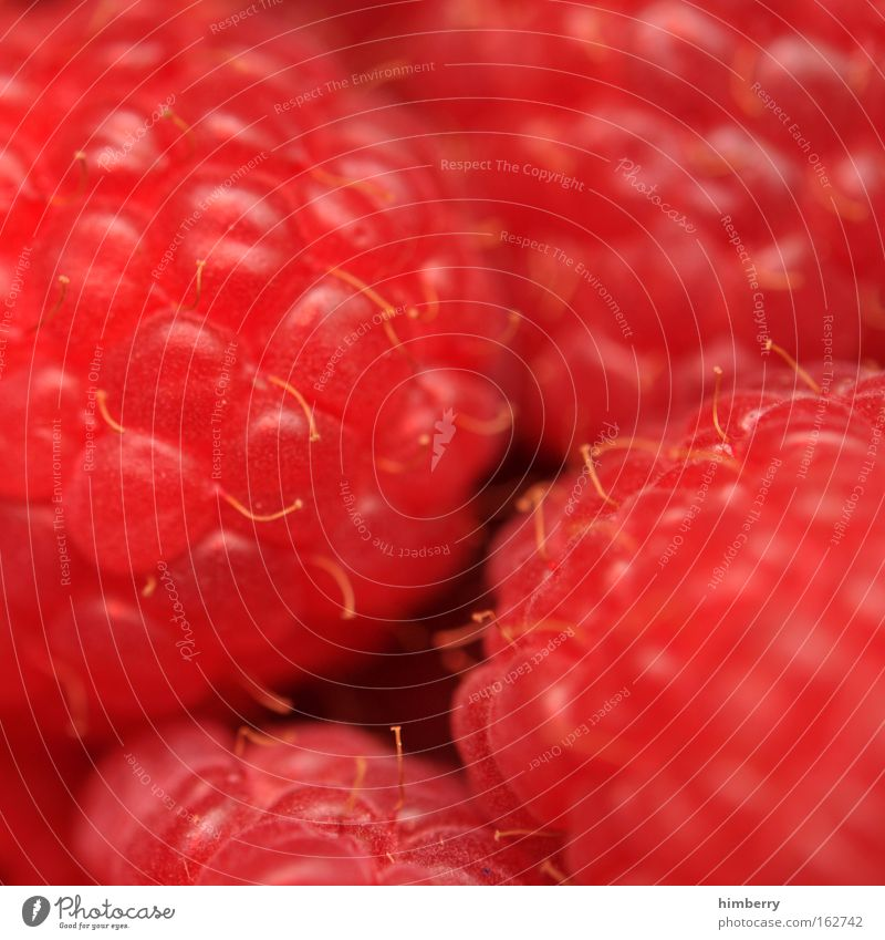 Red Healthy Fruit Natural Food Fresh Nutrition Lifestyle Sweet Round Passion Delicious Candy Organic produce Berries Dessert