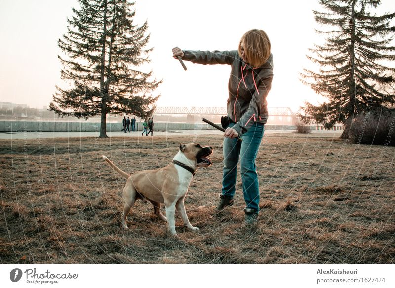 Young woman is playing with her dog in the evening park. Human being Dog Nature Vacation & Travel Youth (Young adults) Summer Young woman Sun Tree Animal 18 - 30 years Adults Environment Spring Emotions Funny