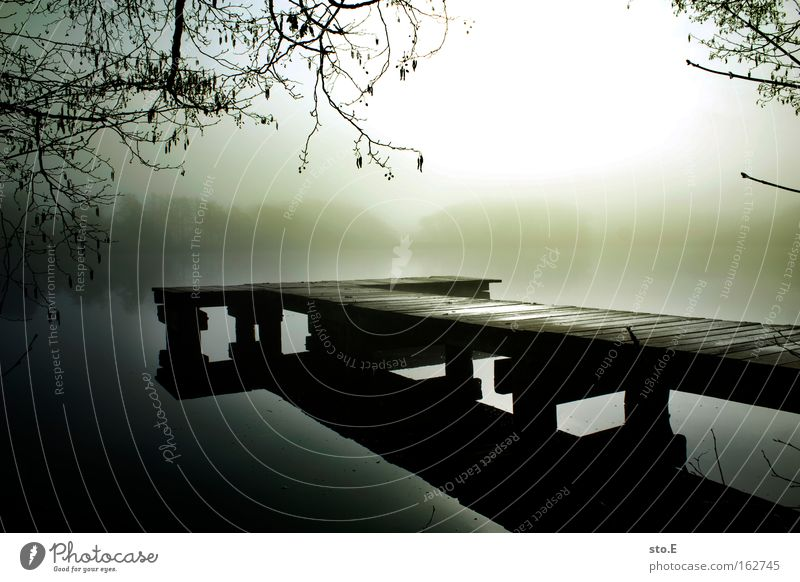 footbridge Lake Body of water Nature Landscape Footbridge Jetty Wood Horizon Coast Lakeside Branchage Reflection Back-light Fog Moody Morning Water Calm