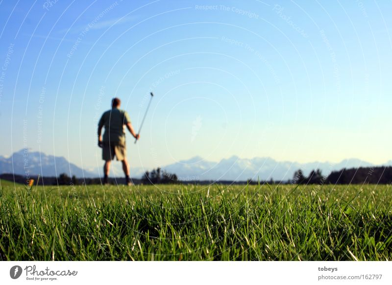 The Golfer Mountain Sports Ball sports Golf course Alps Allgäu Swiss Alps Austrian Alps German Alps Italian Alps Tee off Lechbruck Colour photo