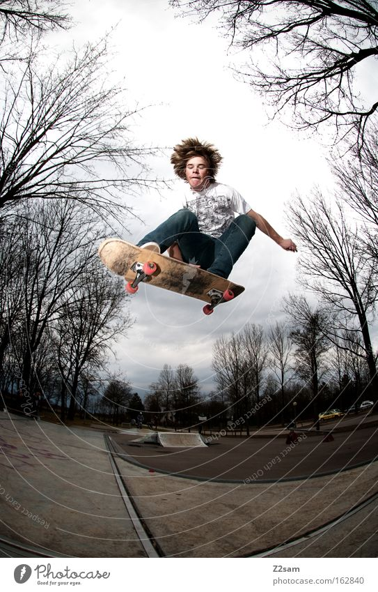 Human being Nature Tree Style Sports Flying Jump Park Action Wooden board Skateboarding Freestyle Funsport Air