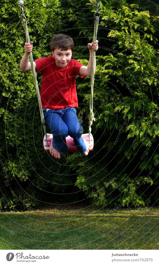 Child Joy Playing Freedom Boy (child) Garden Infancy Swing Playground To swing