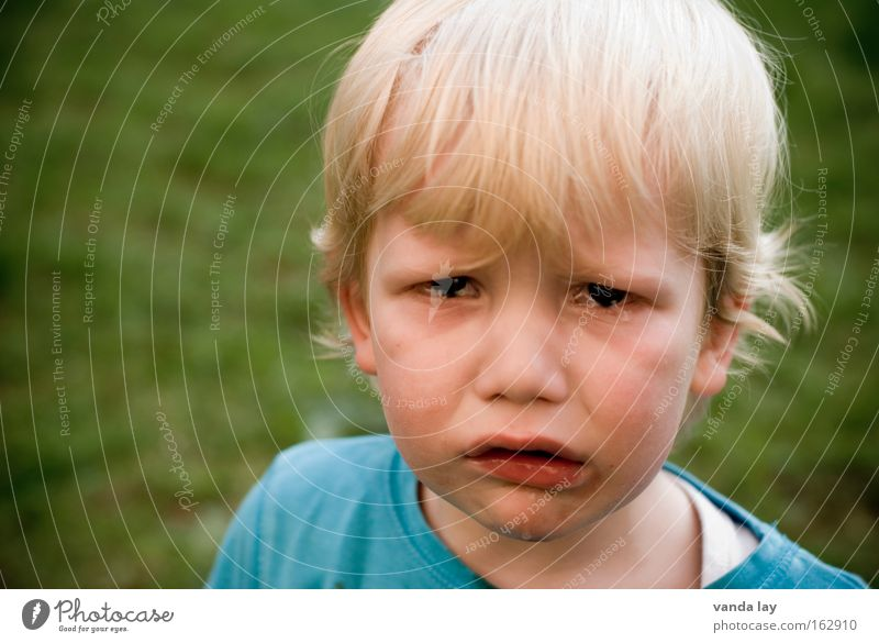 No woman no cry Child Human being Toddler Boy (child) Sadness Cry Anger Grief Distress Aggravation Tears Colour photo Looking into the camera