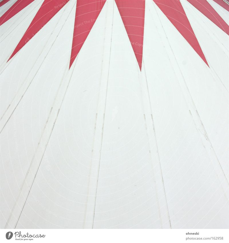 Red Animal Roof Circus Tent Crown Acrobatics Covers (Construction) Prongs Bochum Europe Symbols and metaphors Sensation Circus ring