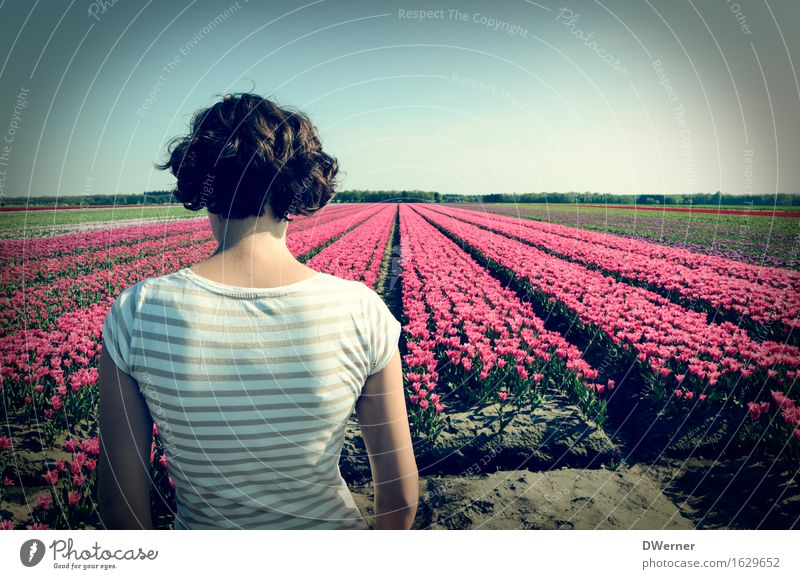 Mrs. Antje from Holland I Body Feminine Young woman Youth (Young adults) 1 Human being 18 - 30 years Adults Nature Plant Sky Spring Beautiful weather Flower