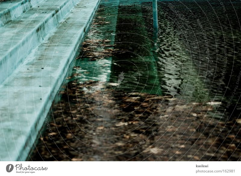 pool III Open-air swimming pool Swimming pool Ladder Water Wet Dive Leaf Decline Time Derelict Algae Dirty Transience Playing