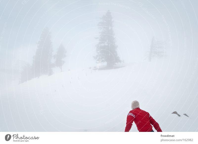 Sky Tree Winter Cold Mountain Back Fog Gloomy Search Switzerland Gale Surrealism Minimal