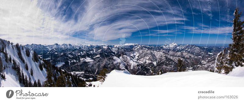 Sky Tree Clouds Snow Mountain Large Alps Vantage point Austrian Alps German Alps Forest Treetop Panorama (Format) Valley Clump of trees