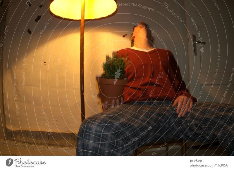 Human being Man Flower Lamp Relaxation Room Tall Sit Hot Alcohol-fueled Living room Boredom Stupid Intoxicant Intoxication Simplistic