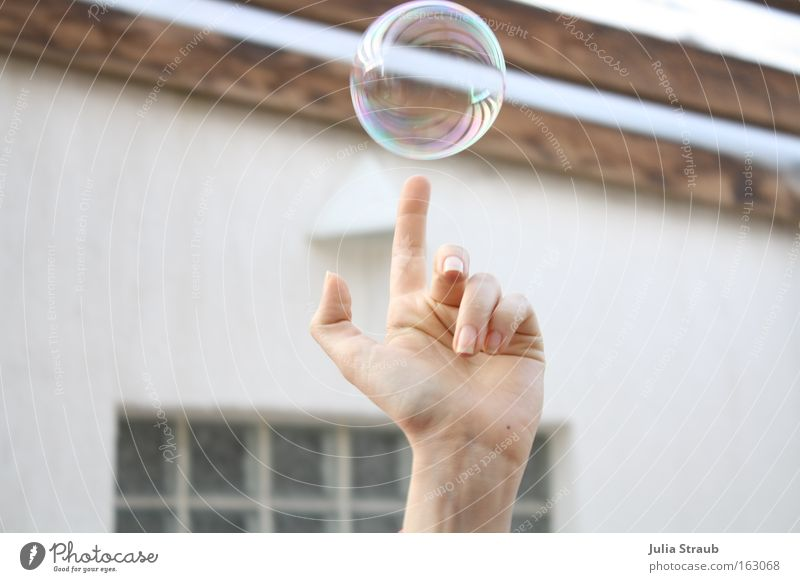 oh, look. Joy Ball Hand Fingers Wood Sphere Round Soap bubble Clarity Magic Whirlpool Colour photo Exterior shot Day Reflection Central perspective