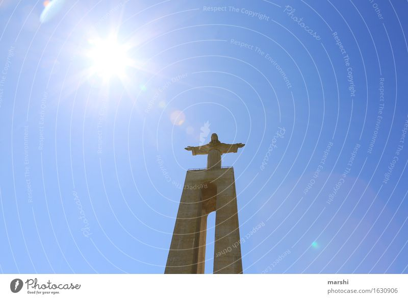 above all... Religion and faith Belief Think Statue Lisbon Jesus Christ Tourist Attraction Tall Height Back-light Sun Bright Brilliant Olive tree Portugal