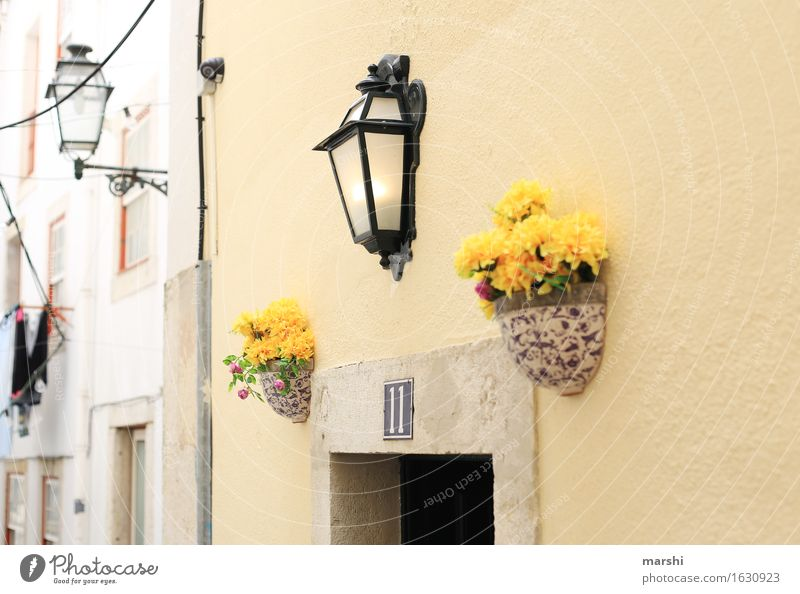 Vacation & Travel City House (Residential Structure) Travel photography Street Wall (building) Emotions Wall (barrier) Moody Lamp Facade Living or residing Door