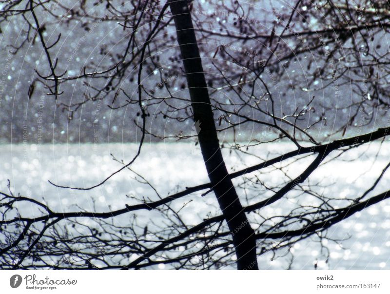 April morning Colour photo Subdued colour Detail Abstract Deserted Day Contrast Silhouette Back-light Deep depth of field Snow Environment Nature Landscape
