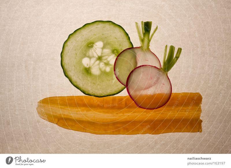 Nutrition Healthy Vegetable Meadow flower Cut Carrot Vegetarian diet Cucumber Radish Vegan diet