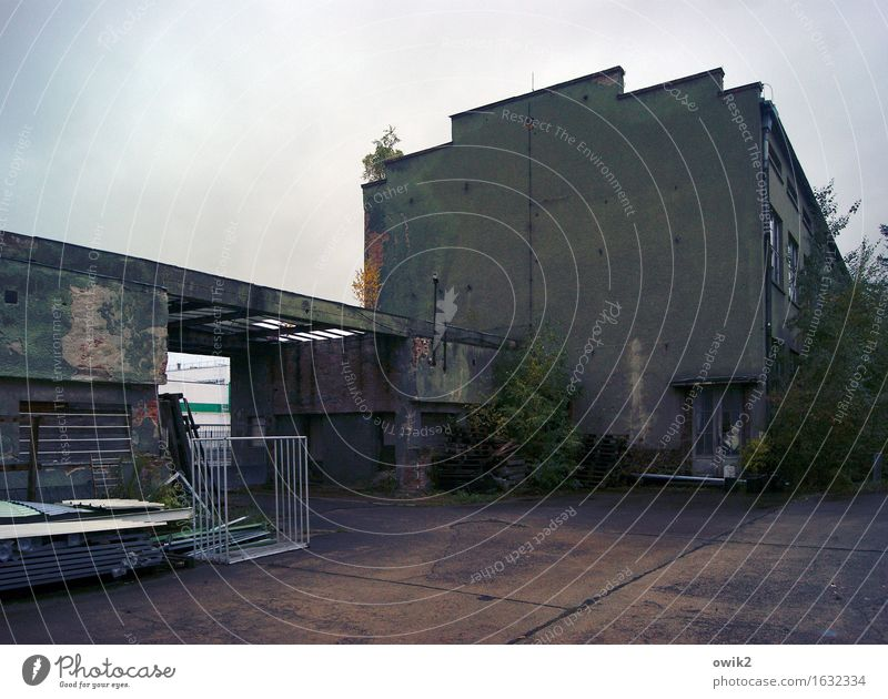 Old Clouds House (Residential Structure) Dark Wall (building) Building Wall (barrier) Germany Facade Gloomy Bushes Things Threat Transience Historic