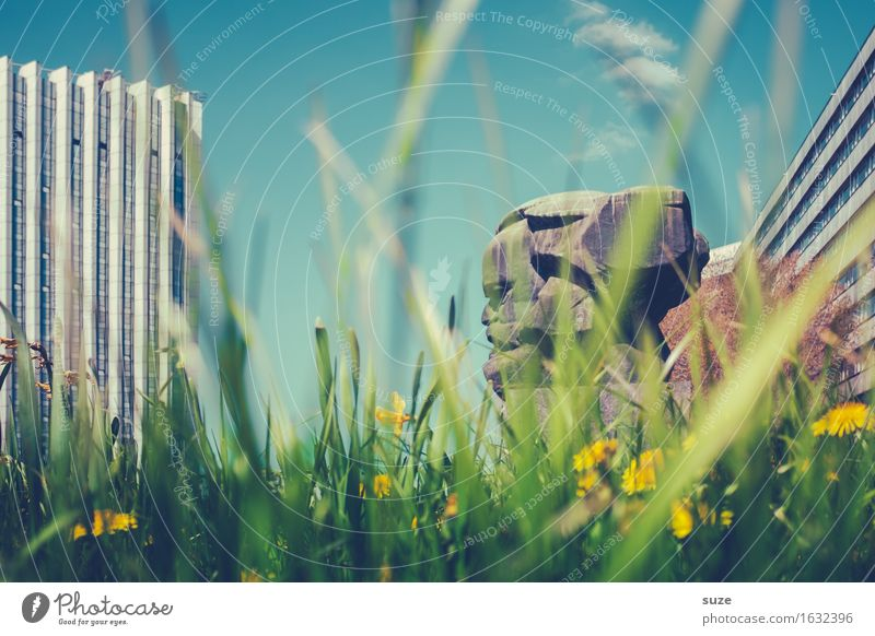Large head Environment Nature Spring Flower Blossom Meadow Town Downtown Places Manmade structures Architecture Tourist Attraction Landmark Monument Green