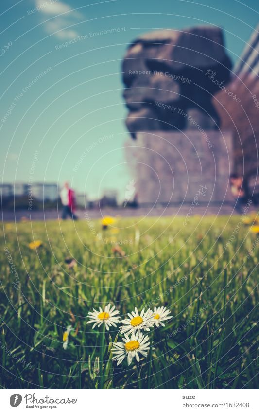 Sky Nature City Green Environment Spring Meadow Moody City life Happiness Monument Tourist Attraction Downtown Environmental protection Daisy In transit