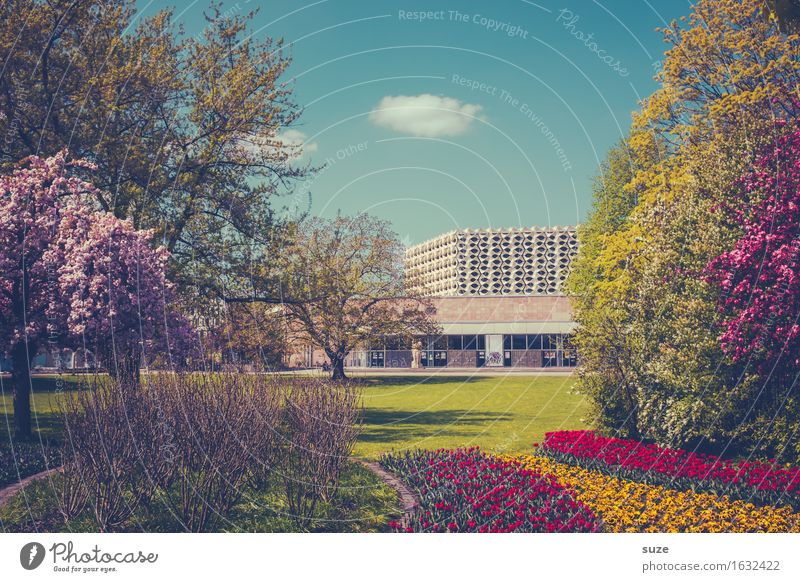 City Plant Blue Green Red Environment Yellow Architecture Blossom Spring Meadow Lifestyle Building Garden Tourism Pink