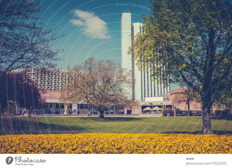 Will-ma Spring Lifestyle Fragrance Tourism City trip Garden Culture Environment Plant Blossom Park Meadow Town Downtown Places Manmade structures Building