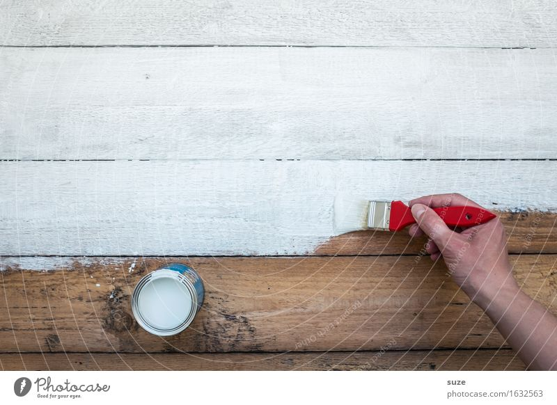 Colour White Hand Dye Wood Brown Work and employment Living or residing Leisure and hobbies Fresh Creativity Transience Painting (action, artwork) Change New Painting (action, work)