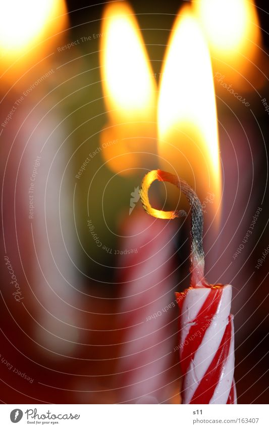 Joy Happy Feasts & Celebrations Birthday Blaze Candle Hot Flame Baked goods Gateau Jubilee Congratulations Candlewick