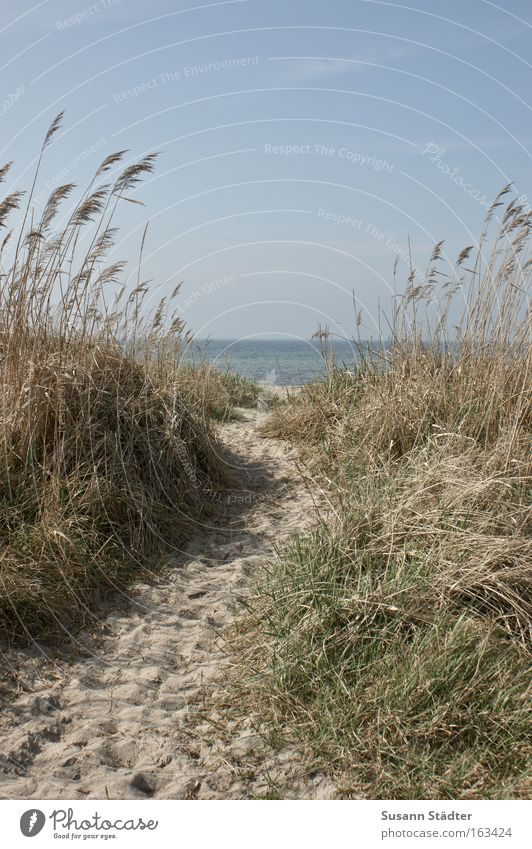 Water Ocean Beach Calm Loneliness Far-off places Life Relaxation Freedom Happy Dream Feet Lanes & trails Lake Sand Air