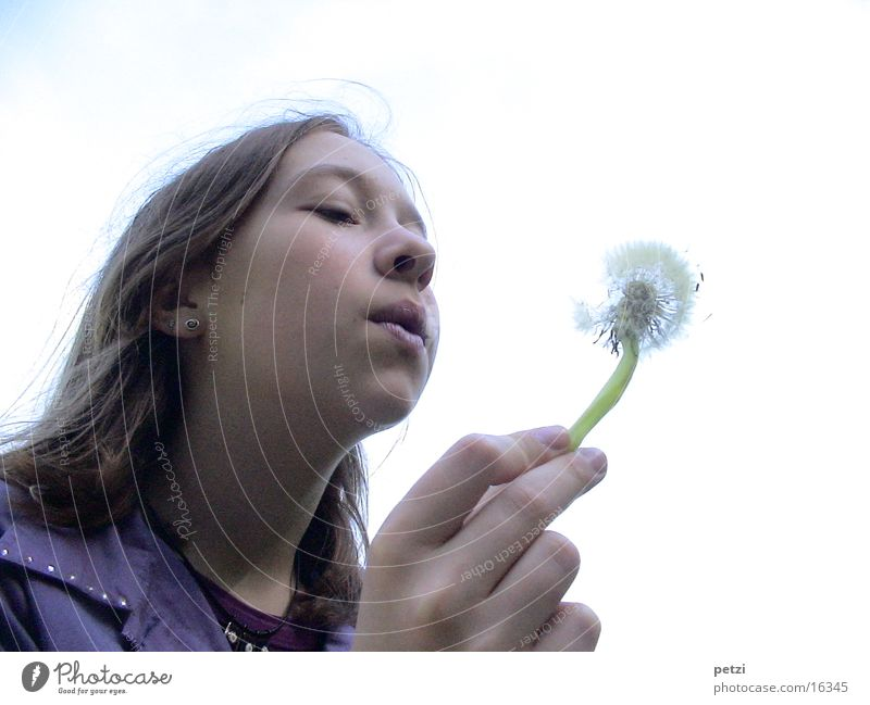 Child Hand Face Wind Dandelion Blow Seed