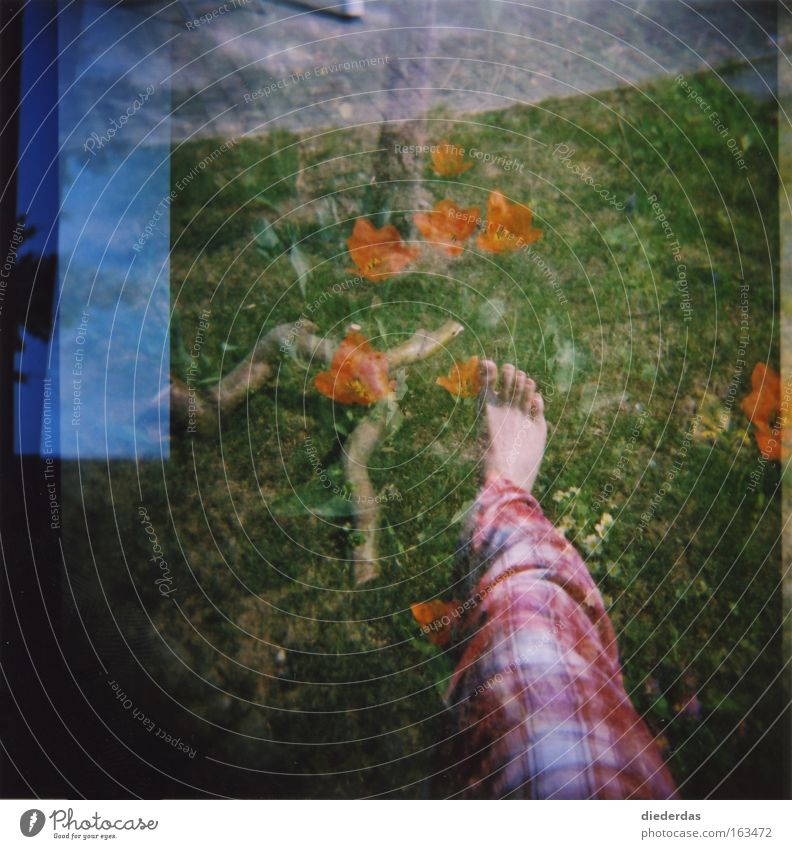 Good morning nature Lomography Lawn Legs Flower Sky Holga camera multiple exposure Irritation