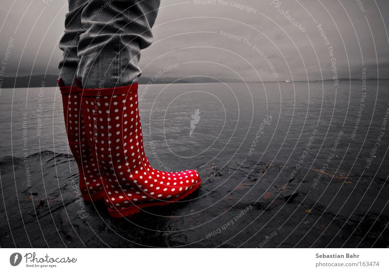 Water Sky Red Clouds Autumn Gray Black & white photo Point Deep Norway Scandinavia Fjord Rubber boots Trondheim