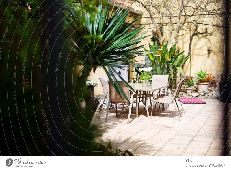 patio Leisure and hobbies Living or residing Flat (apartment) Dream house Decoration Nature Summer Beautiful weather Plant Tree Small Town Outskirts