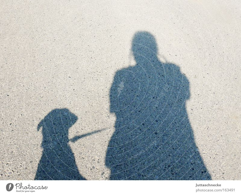 Mr and G´scher Shadow Silhouette Dog Human being Walk the dog To go for a walk Leashed Elapse Communicate Mammal Rope In pairs double pack pet owners