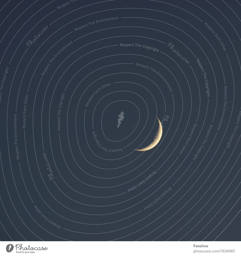 # I'm duskin' # Sky Sky only Cloudless sky Night sky Moon Thin Natural Gray White Crescent moon increasing Moonlight Colour photo Subdued colour Exterior shot
