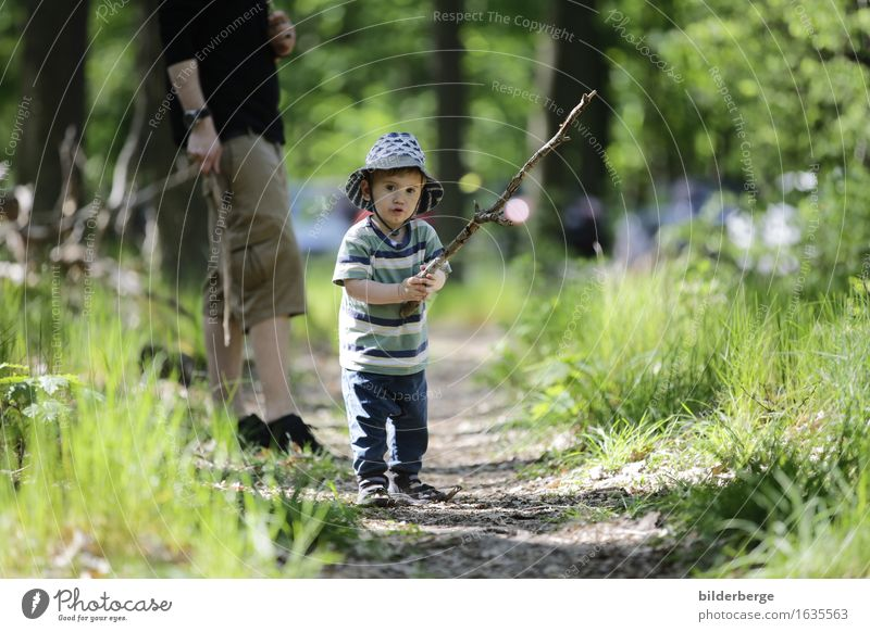 the hikers Vacation & Travel Trip Hiking Human being Masculine Child Family & Relations 2 Environment Nature Movement Emotions Power Hiking stick Forest walk