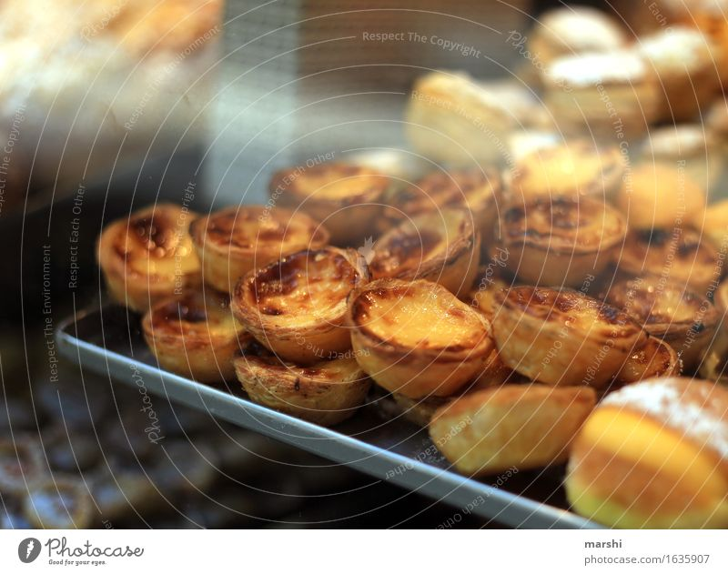 pastel de nata Food Dessert Candy Nutrition Eating Moody Sweet Lisbon Pudding Flaky pastry Bakery Tradition Calorie Colour photo Interior shot Close-up Detail