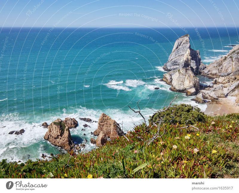 praia da urs Nature Landscape Plant Spring Summer Bushes Rock Coast Ocean Emotions Moody Portugal Sintra Beach Travel photography Vacation photo