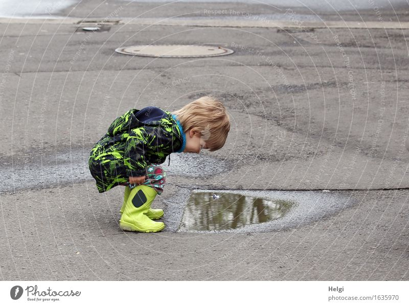 little boy with yellow rubber boots and black and yellow jacket squats in front of a puddle and looks at his reflection in wonder Human being Masculine Toddler